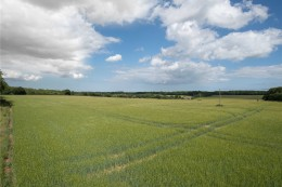 Woodlands Road, Adisham, Canterbury, Kent, CT3, Canterbury, South East England