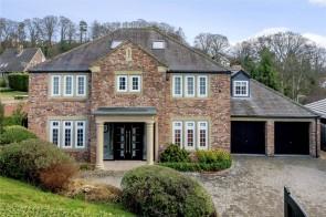 Upper Fenwick Grove, Morpeth, Northumberland, NE61, Morpeth, North East England